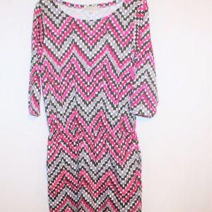 Banana Republic pink check drop waist shirt dress